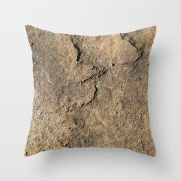 Stone paving Throw Pillow