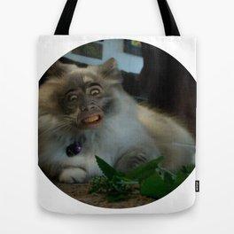 Nicolas Cage Cat Wants Nip Tote Bag