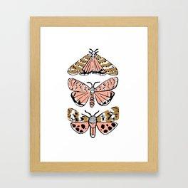 Fly - butterflies art print, lepidoptery, moth art print, nature art, botanical, linocut art Framed Art Print