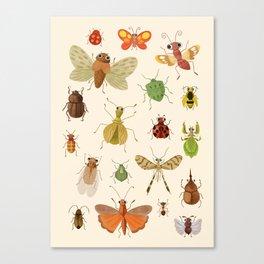 Encyclopédie des insectes  Canvas Print