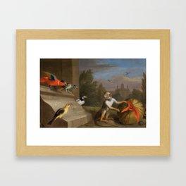 Jacob Bogdani - Parrots and monkey Framed Art Print