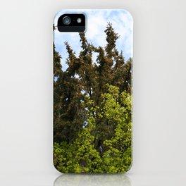 Du og jeg iPhone Case