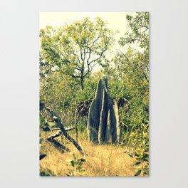 colony Canvas Print