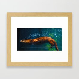 Otter Bubbles Framed Art Print