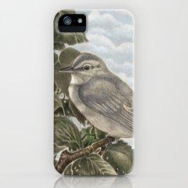 Bebe iPhone Case
