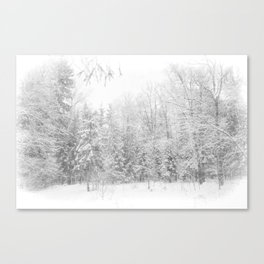Life in white Canvas Print
