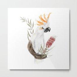 Salmon Crested Cockatoo Illustration Metal Print