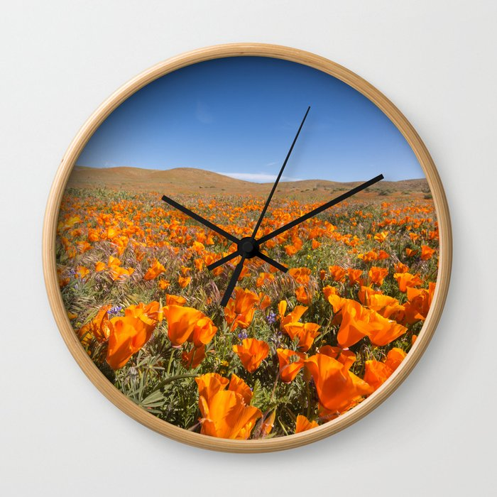 Blooming poppies in Antelope Valley Poppy Reserve Wall Clock