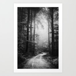 Foggy road in the dark, misty forest at late autumn Art Print
