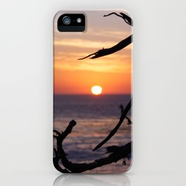 Sunset by the Lonely Cypress. iPhone Case