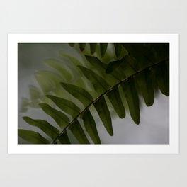 Upside down leaves Art Print