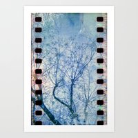 Blue Winter Blossoms  Art Print