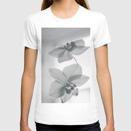 Lillys T-shirt