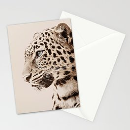 African Leopard Stationery Cards