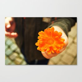An Offering Canvas Print