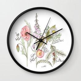Natures Bounty Wall Clock