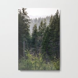 Forest Fog VII - 93/365 Nature Photography Metal Print
