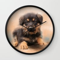 german shepherd Wall Clocks featuring German Shepherd Puppy Portrait by Jai Johnson