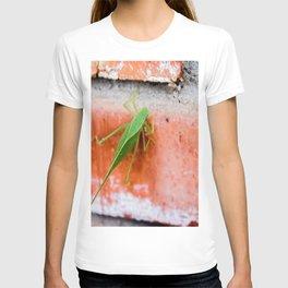 Leaf Bug T-shirt