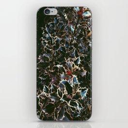 Holly Berries iPhone Skin