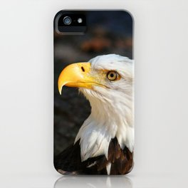In The Eye Of A Raptor iPhone Case