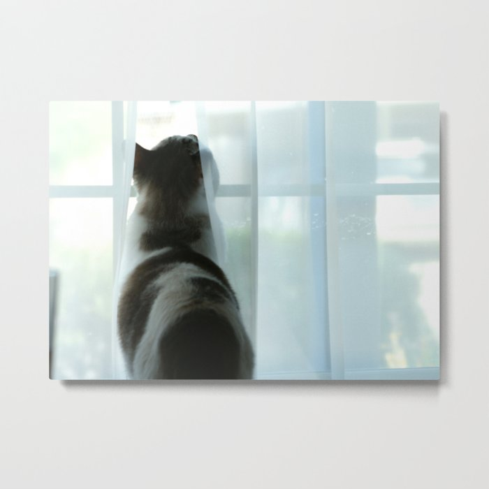 In The Window - JimmyDean Metal Print