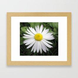 White composite flower Framed Art Print