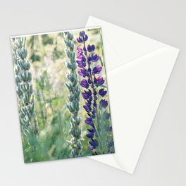 Lupin Stationery Cards