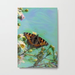 The butterfly collecting pollen on a flower Metal Print