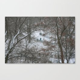 Snow in Tompkins Square Park. East Village. New York. Canvas Print