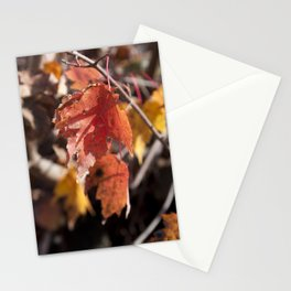 Fall in Manchester, NH Stationery Cards