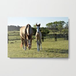 Mom and baby India Metal Print