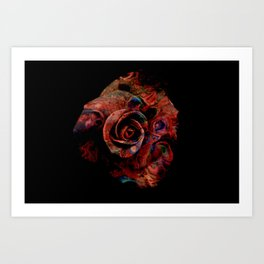 Fluid Nature - Marbled Red Rose Art Print