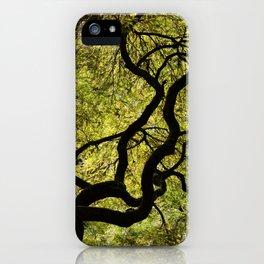Japanese Maple Tree iPhone Case