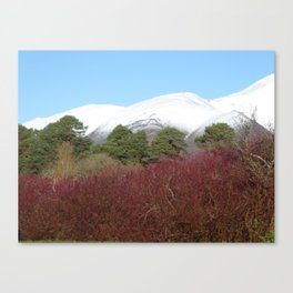 Snow capped Cumbrian mountains Canvas Print