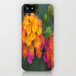 Flowers in Spain iPhone Case
