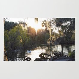 Mossy Trees Surround A Sun Reflected Lake With White Goose Rug