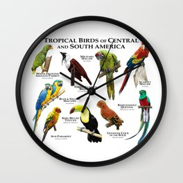 Tropical Birds of South and Central America Wall Clock