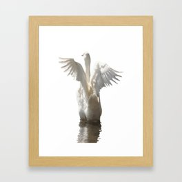 White Duck Flapping Wings on Water Vector Framed Art Print