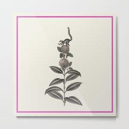 Panel Lemur Metal Print