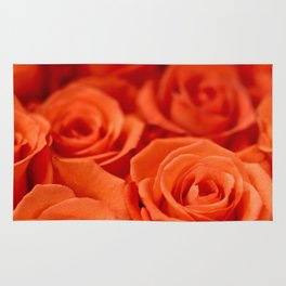 Delicate red roses Rug