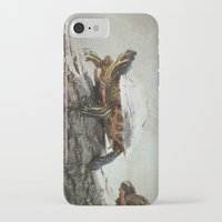 turtle iPhone & iPod Cases featuring turtle by Tanja Riedel