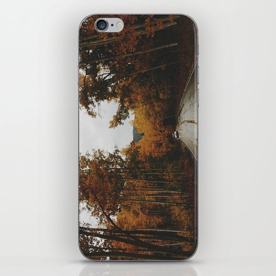 Aspen iPhone & iPod Skin
