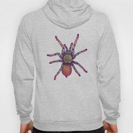 Rainbow Spider Hoody