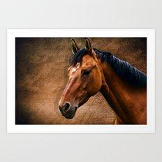 The horse portrait Art Print