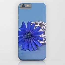 Still life with chicory flower iPhone Case