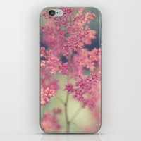 coral iPhone & iPod Skins featuring Coral by Sandra Arduini