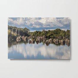 Dead Lakes Florida  Metal Print