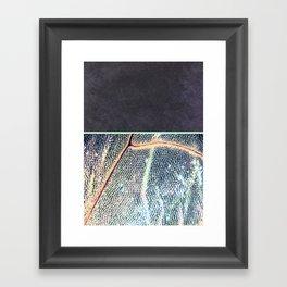 concrete.dragOnfly Framed Art Print