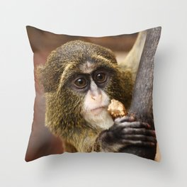 Young Debrazza's Monkey  Throw Pillow